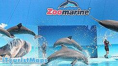 Zoomarine Amusement Park